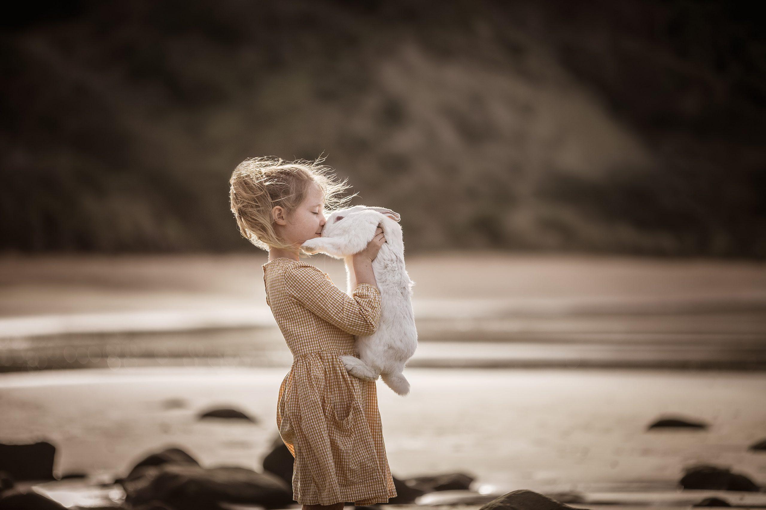 Rabbit bunny beach photography